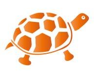 Nette Schildkröten Lizenzfreies Stockbild