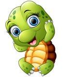 Nette Schildkrötenkarikatur lokalisiert auf weißem Hintergrund Stockbilder