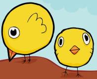 Nette Schätzchen-Hühner Stockfoto