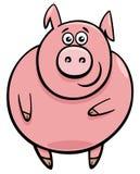Nette Schweincharakter-Karikaturillustration Lizenzfreie Stockfotografie