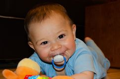 Nette sechs Monate alte Baby, die auf der Flor mit Zahnenspielzeug, fr?her Entwicklung und Zahnenkonzept spielen stockbild