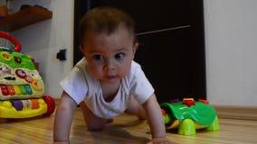 Nette sieben Monate alte Baby, die das Kriechen, Transportwagen heraus lernen, schossen stock footage