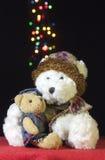 Nette Teddybären Stockfotografie