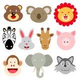 Nette Tiergesichter Lizenzfreies Stockfoto