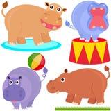 Nette Tiervektorikonen: Hippopotamus (Flusspferd) Lizenzfreie Stockfotos