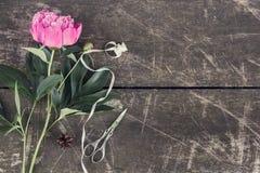 Nette und stilvolle Brandingmodellfoto-Espritpfingstrosen Stockbild
