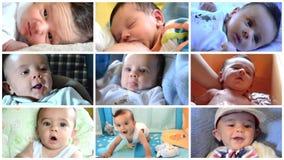 Nette wenig Babycollage stock video