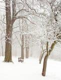 Nette Winterszene Stockbilder