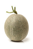 Netted melon Royalty Free Stock Photography