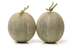 Netted melon Royalty Free Stock Images