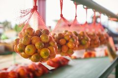 Netten met sinaasappelen die in rij hangen stock foto's
