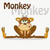 Netter Affe auf einem weißen Hintergrund Auch im corel abgehobenen Betrag Stockfotografie
