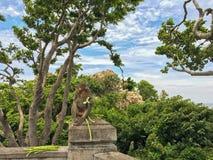 Netter Affe, der Gurken- und yardlongbohnen auf konkretem Pfosten isst, Lizenzfreie Stockbilder