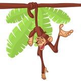 Netter Affe-Schimpanse, der an hölzerne Niederlassungs-flache helle Farbe vereinfachter Vektor-Illustration im Spaß-Karikatur-Art Stockfoto