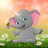 Netter Babyelefant, der auf Grashintergrund sitzt Stockbild