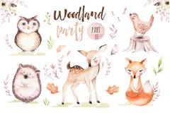 Netter Babyfuchs, Rotwildtierkindertagesstättenvogel und Bär lokalisierten Illustration für Kinder Aquarell boho Waldzeichnung stock abbildung