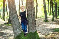 Netter blonder Junge, der zwischen Baumstämmen im sonnigen Park spielt Lizenzfreies Stockfoto