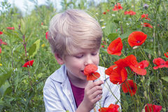 Netter blonder Junge mit einer roten Mohnblume in seiner Hand Stockbilder
