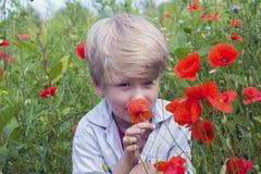 Netter blonder Junge mit einer roten Mohnblume in seiner Hand Stockbild