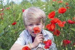 Netter blonder Junge mit einer roten Mohnblume in seiner Hand Stockfoto