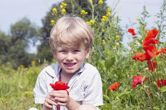 Netter blonder Junge mit einer roten Mohnblume in seiner Hand Stockfotografie
