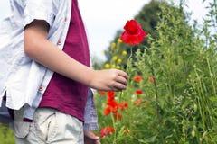 Netter blonder Junge mit einer roten Mohnblume in seiner Hand Lizenzfreies Stockbild