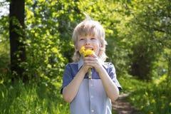 Netter blonder Junge mit Löwenzahn draußen Lizenzfreies Stockbild