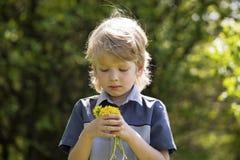 Netter blonder Junge mit Löwenzahn draußen Stockfotografie