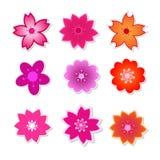 Netter Blume Kirschblüte-Vektor Stockfoto