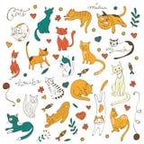 Netter bunter Satz Hand gezeichnete Katzen mit Zweigblumen und -blättern Lizenzfreie Stockfotos