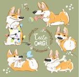 Netter Corgi-Hundecharakter-Karikatur-Vektor-Satz Lustiges kurzes Fox-Haustier-Gruppen-Lächeln, Spiel mit Ball und Knochen Nettes lizenzfreie abbildung