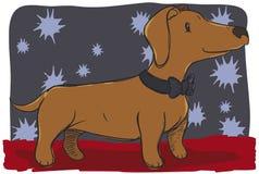 Netter Dachshund mögen einen Herrn für einen Hundewettbewerb, Vektor-Illustration vektor abbildung