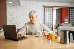 Netter erwachsener Mann frühstückt am Laptop lizenzfreies stockfoto