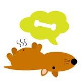 Netter fetter brauner hungriger Hund Lizenzfreies Stockfoto