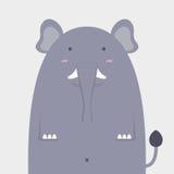 Netter fetter großer Elefant Lizenzfreies Stockfoto
