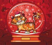 Netter freundlicher Tiger innerhalb der Schneehaube. Stockbilder