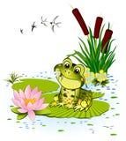 Netter Frosch stock abbildung