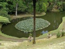 Netter Garten lizenzfreies stockfoto