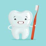 Netter gesunder weißer Karikaturzahncharakter mit roter Zahnbürste, Zahnheilkunde-Konzeptvektor Illustration der Kinder Lizenzfreie Stockbilder
