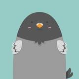 Netter großer fetter Taubenvogel Lizenzfreies Stockfoto