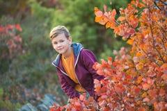 Netter hübscher stilvoller Junge, der bunten Herbstpark mit seinem besten roten und weißen englischen Stierhund des Freunds genie Lizenzfreies Stockfoto