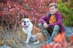 Netter hübscher stilvoller Junge, der bunten Herbstpark mit seinem besten roten und weißen englischen Stierhund des Freunds genie Stockfotografie