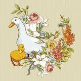Netter Hintergrund mit Enten und Blumen Stockbild