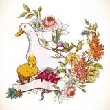 Netter Hintergrund mit Enten und Blumen Lizenzfreies Stockfoto