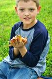 Netter Holdingfrosch des kleinen Jungen Stockfotografie