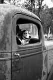 Netter Hund in einem alten LKW Stockbilder
