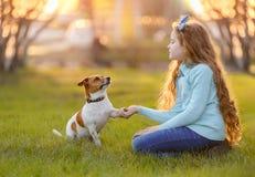 Netter Hund gibt dem Kind die Tatze stockbilder