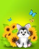 Netter Hund mit Sonnenblumen lizenzfreie abbildung