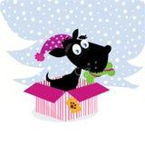 Netter Hundewelpe, der im Weihnachtsgeschenk sitzt Lizenzfreies Stockbild
