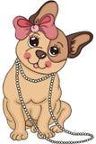 Netter Hundewelpe mit einer Halskette und Haar beugen Lizenzfreies Stockbild